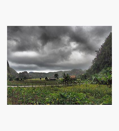 Viñales  Photographic Print