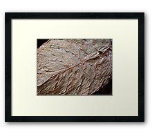 Detail, Tobacco Leaf Framed Print