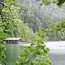 Alpsee Lake, Hohenschwangau by Vickie Simons
