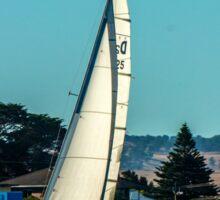 Goolwa Regatta Yacht Club Christmas Twlight Races Sticker