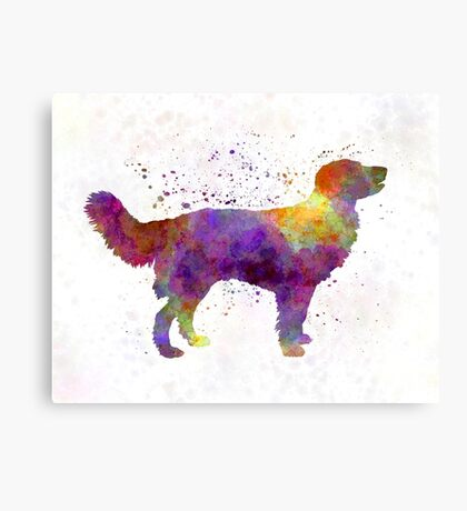 Drentsche Partridge Dog in watercolor Canvas Print