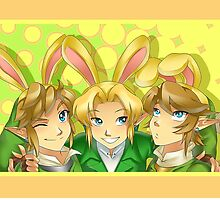 Legend of Zelda: Bunny Hoods by Zelbunnii