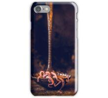 Octopus in ladle iPhone Case/Skin