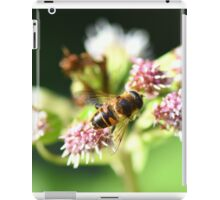 """ Nectar Stripes "" iPad Case/Skin"