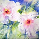 Peony Perfection by Ruth S Harris
