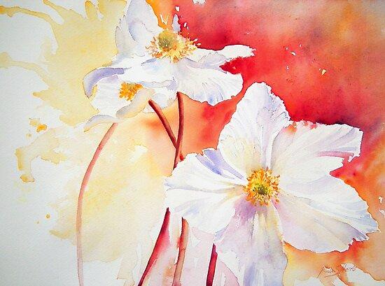 White Windflowers by Ruth S Harris