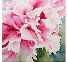 Perfect Pink Peony Photographic Print