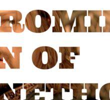 Boromir son of Denethor Sticker
