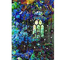 The decorated window Photographic Print