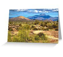 Sonoran Desert Greeting Card