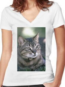 "Chat - Cat  "" Zazou ""  2   (c)(t) by Olao-Olavia / Okaio Créations 300mm  f.2.8 canon eos 5  1994 Women's Fitted V-Neck T-Shirt"