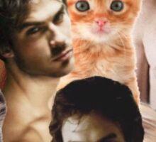 Ian Somerhalder & kittens Sticker
