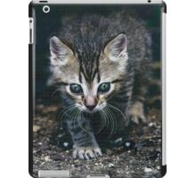 "Chat - Cat "" Zazou ""  3  (c)(t) by Olao-Olavia / Okaio Créations 300mm  f.2.8 canon eos 5  1989 iPad Case/Skin"