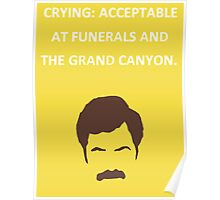 Ron Swanson Poster