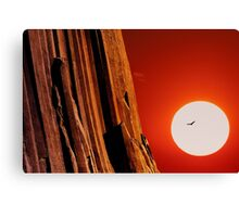 Sunset over Devils Tower .3 Canvas Print