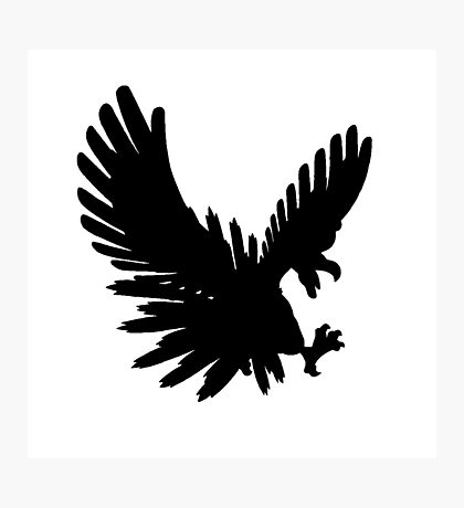 Ho Oh Silhouette Photographic Print