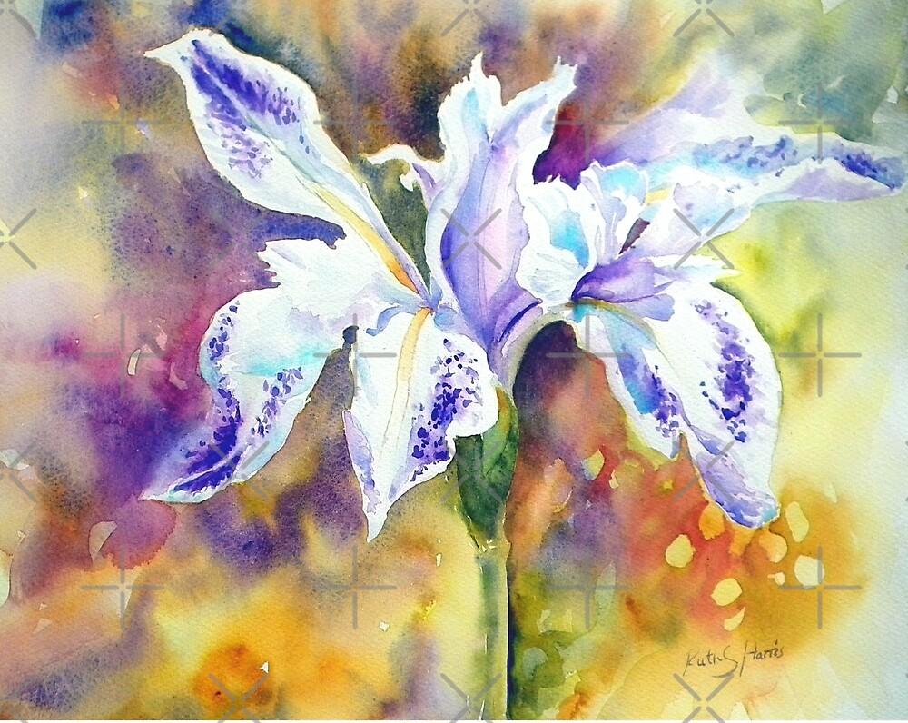 Pond Iris by Ruth S Harris