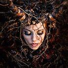 roots by jamari  lior