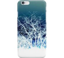 Winter is coming (landscape) iPhone Case/Skin
