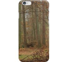 Autumn at Thetford iPhone Case/Skin