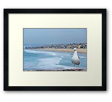 Jonathon from Manhattan beach Framed Print