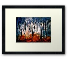Early Snow... Framed Print