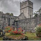 Muckross Abbey - Killarney - County Kerry - Ireland by TonyCrehan