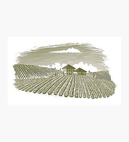 Woodcut Vineyard Landscape Photographic Print