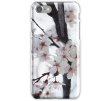 Blossoms iPhone Case/Skin
