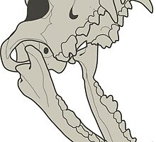 """Howl"" Bones by Scribble-Rapo"