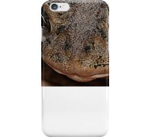 Southern Toad - Anaxyrus Terrestris iPhone Case/Skin