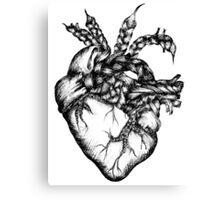 Braided Heart Canvas Print