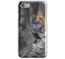 Red Squirrel - selective colour iPhone Case/Skin