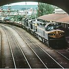 Diesel train coming into Ballarat station_  19800500 0036 by Fred Mitchell