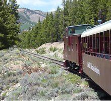 Leadville Colorado & Southern Railroad by clizzio
