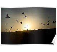 lets fly together  Poster
