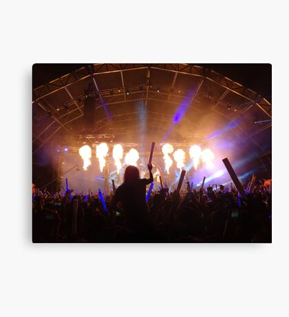 flame on concert  Canvas Print