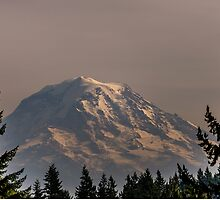 Framing Mt. Rainer by JPNation