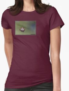 Spiny Orb Weaver - Gasteracantha Cancriformis T-Shirt