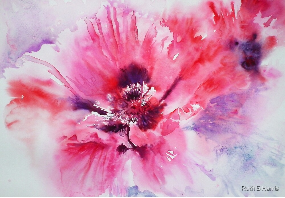 Plum Poppy by Ruth S Harris