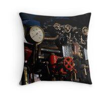 Controlling the steam on Mallard 4468 Throw Pillow