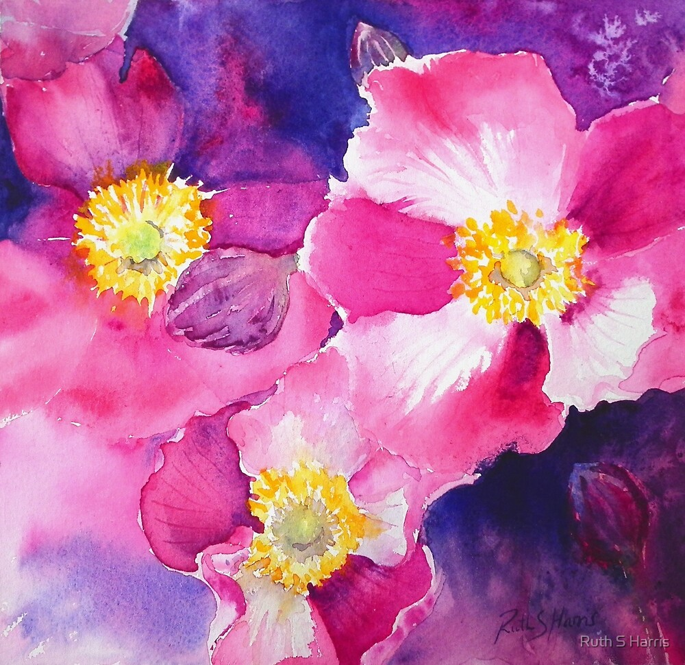Anemones by Ruth S Harris