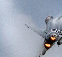RAF Typhoon Sticker