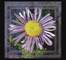 Close Up Lilac Aster With Bright Yellow Centre Kids Tee