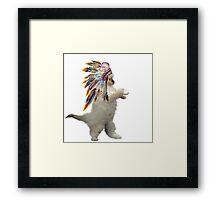 indian cat Framed Print