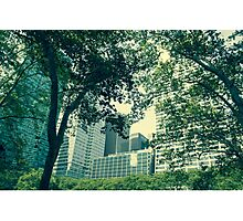 Skyscrapers Photographic Print