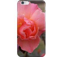 June Rose iPhone Case/Skin