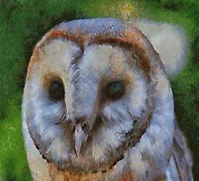 Tawny Owl In The Style of Camille by taiche
