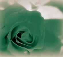 Rosemary's Garden by Chanel70