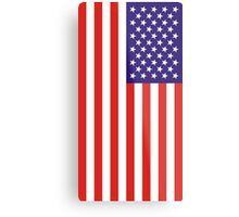 US National Flag Metal Print
